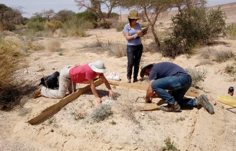 Desert Ecosystems and Society