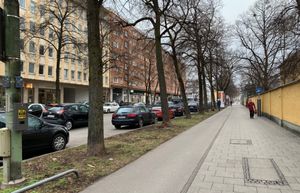 A new project on the ecosystem services of urban trees