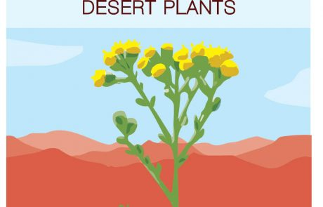 "New Booklet ""Deseret Plants"""