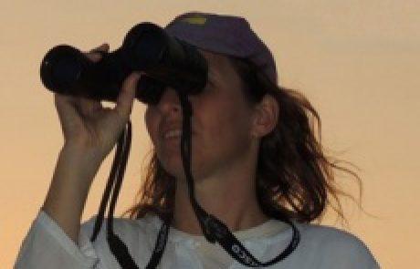 Nitzan Segev<BR><BR><BR><h4>Desert Ecology</h4>