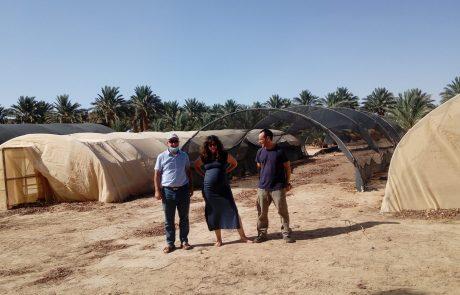 פרויקט חדש של שילוב אנרגיה סולרית וחקלאות