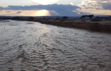 ארוע גשם חריג בערבה ובדרום הנגב
