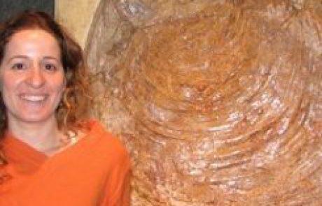 """ד""""ר שרית אשכנזי פוליבודה<BR><BR><h5>פליאואקולוגיה ופליאואקלים</h5>"""