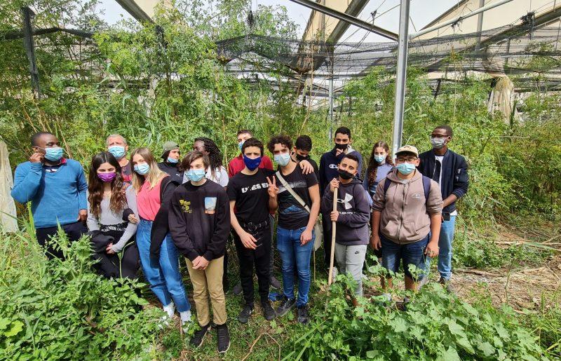הישג ענק לתלמידי תיכון עין גדי- זכו בתחרות ה-ISDGהיוקרתית ויטוסו בשנה הבאה לרומא