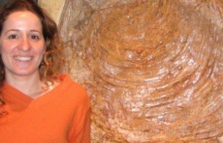 """ד""""ר שרית אשכנזי פוליבודה<BR><h4>פליאואקולוגיה ופליאואקלים</h4>"""